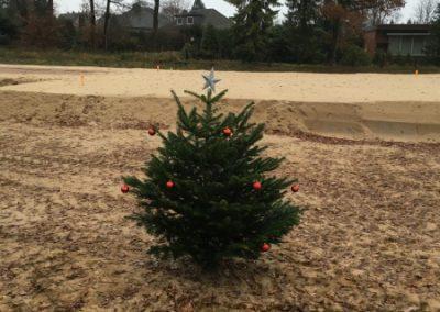 Weihnachtsbaum (1)